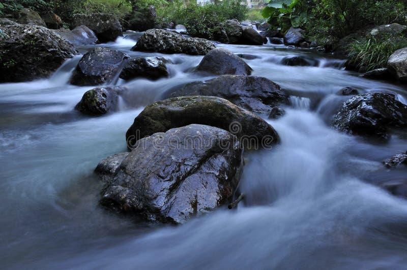 Кровать реки стоковые фотографии rf
