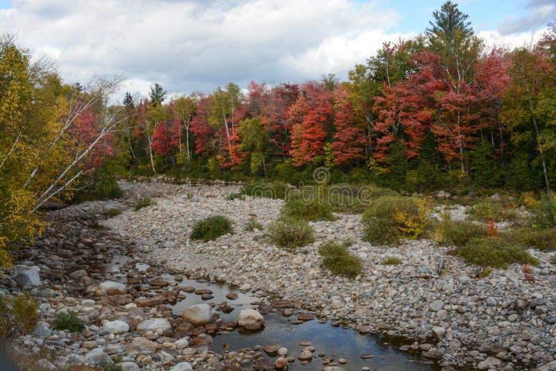 Кровать Stony Creek стоковое фото rf