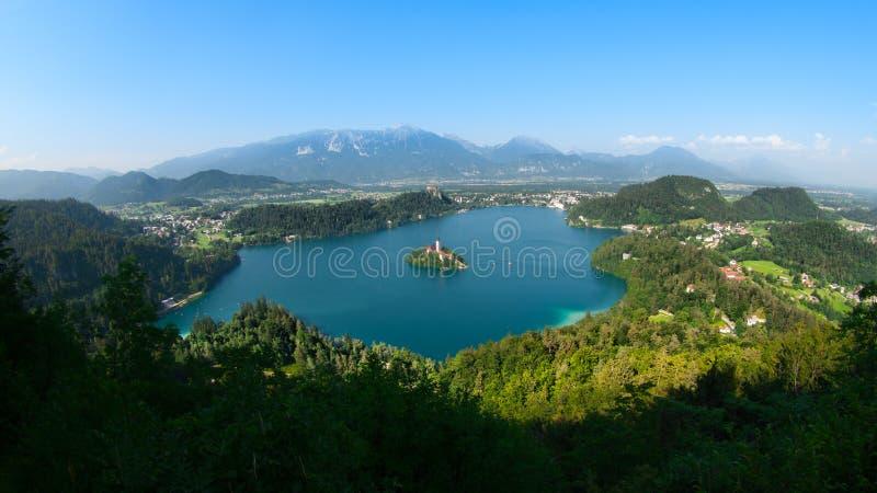 кровоточенная панорама озера стоковая фотография rf