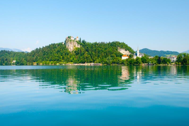 Кровоточенное озеро на солнечный летний день, Словения замк вышеуказанное кровоточенное, Европа стоковая фотография