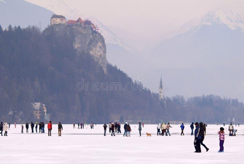 КРОВОТОЧЕННОЕ ОЗЕРО, СЛОВЕНИЯ - 12-ОЕ ФЕВРАЛЯ 2012: Семьи наслаждаясь замороженным кровоточенным озером стоковая фотография rf