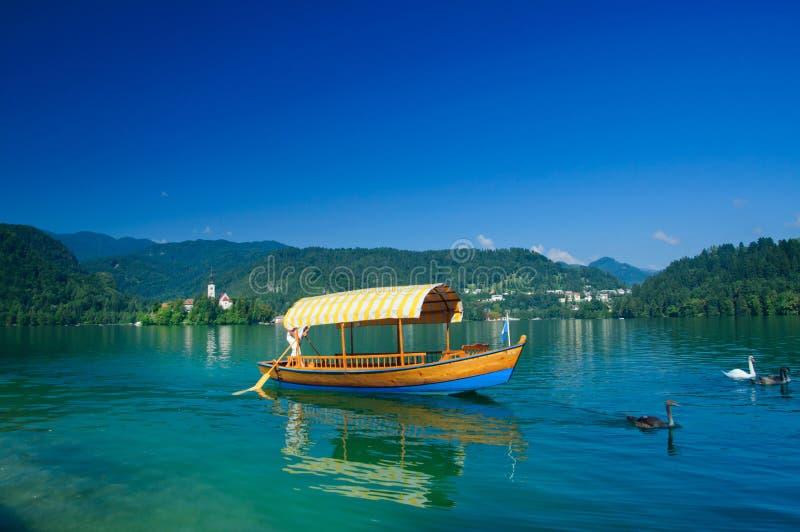 кровоточенное озеро Словения шлюпки цветастое стоковая фотография
