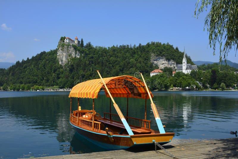 кровоточенный водопад смога Словении vintgar стоковые фотографии rf