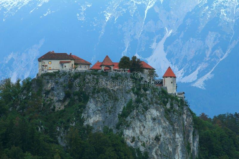 Кровоточенный замок, альп, Словения. стоковые изображения rf