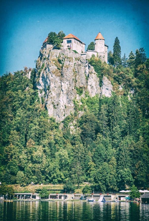 Кровоточенный замок на высоком утесе, Словения, сетноой-аналогов фильтр стоковые фотографии rf