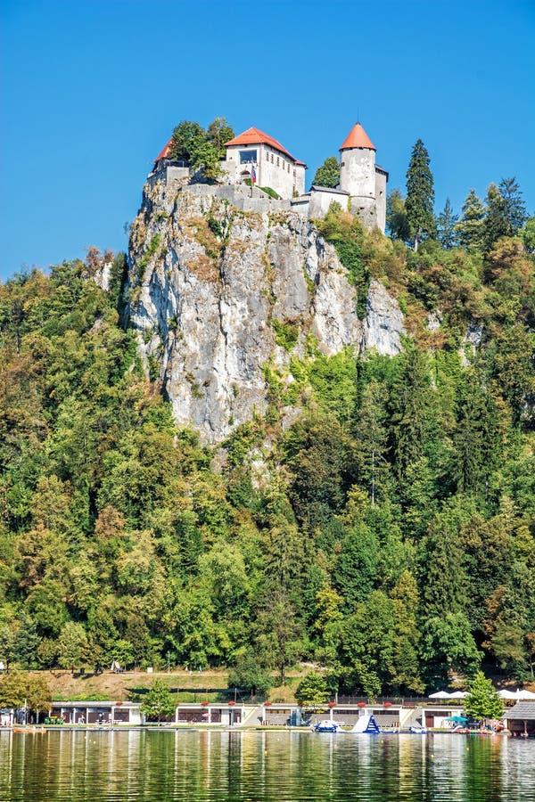 Кровоточенный замок на высоком утесе, Словения стоковые фото