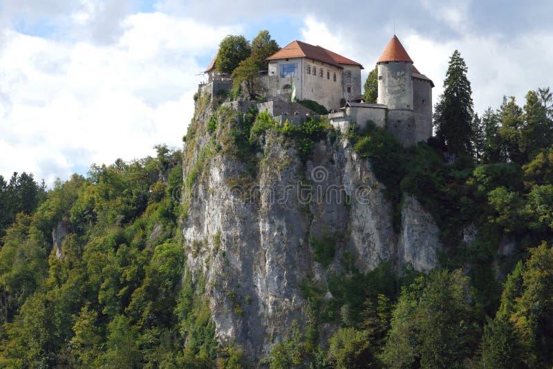 Кровоточенный замок построенный na górze озера скалы обозревая кровоточил, размещенный в кровоточенный, Словения стоковое фото rf