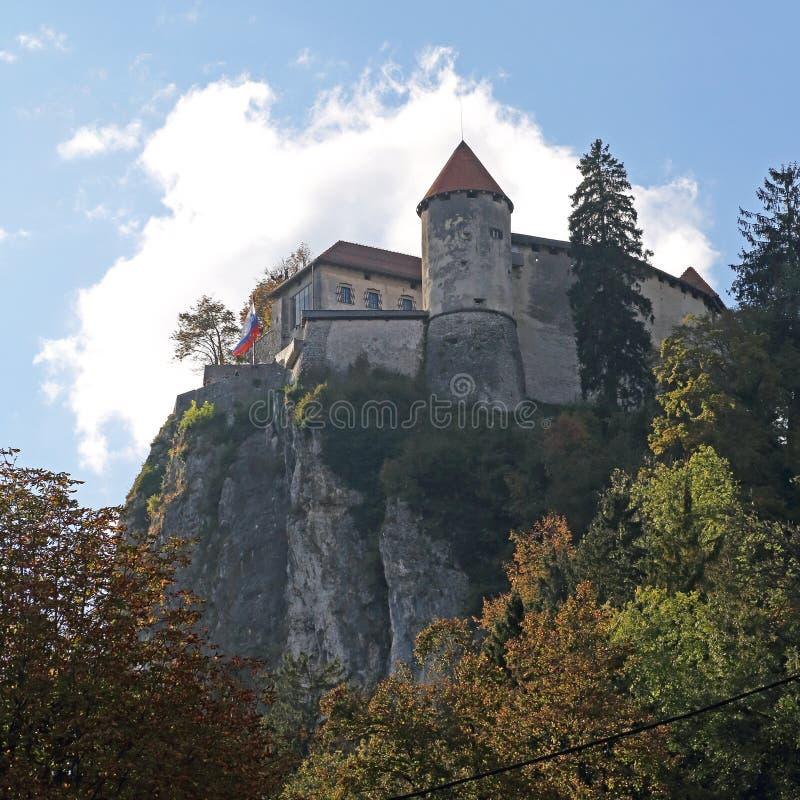 Кровоточенный замок стоковое изображение rf