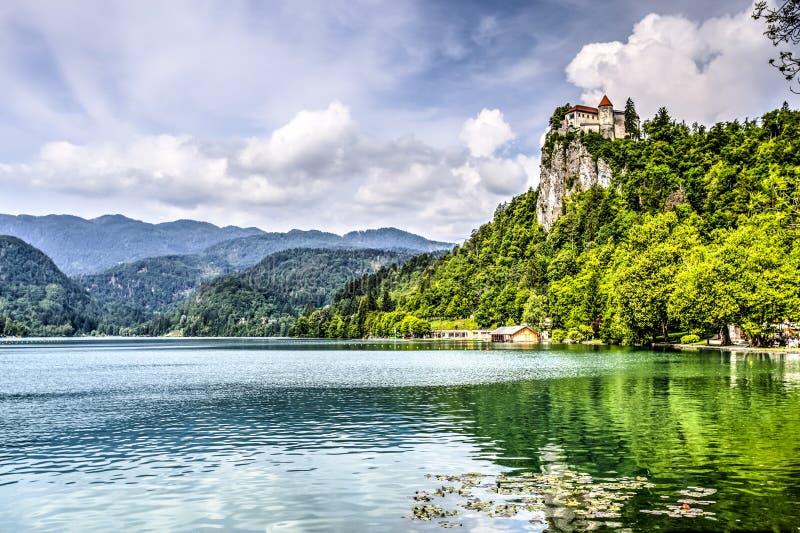 Кровоточенный замок, Словения 3 стоковое фото