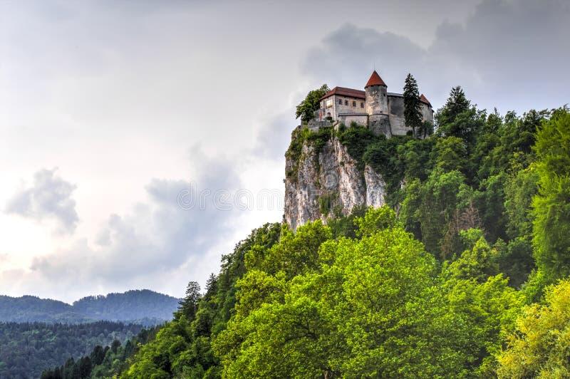 кровоточенный замок Словения стоковое фото