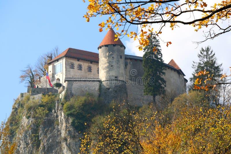 Кровоточенный замок стоковые изображения rf