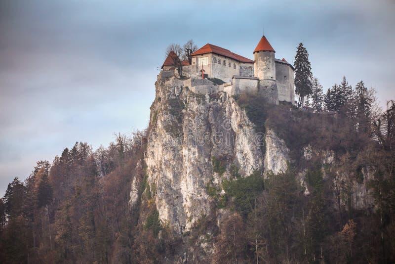 кровоточенный замок стоковая фотография rf