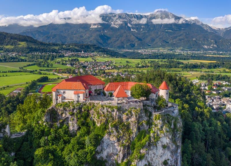 Кровоточенный, Словения - вид с воздуха красивого кровоточенного выпускника Blejski замка с юлианскими Альп и голубое небо на пре стоковые фото
