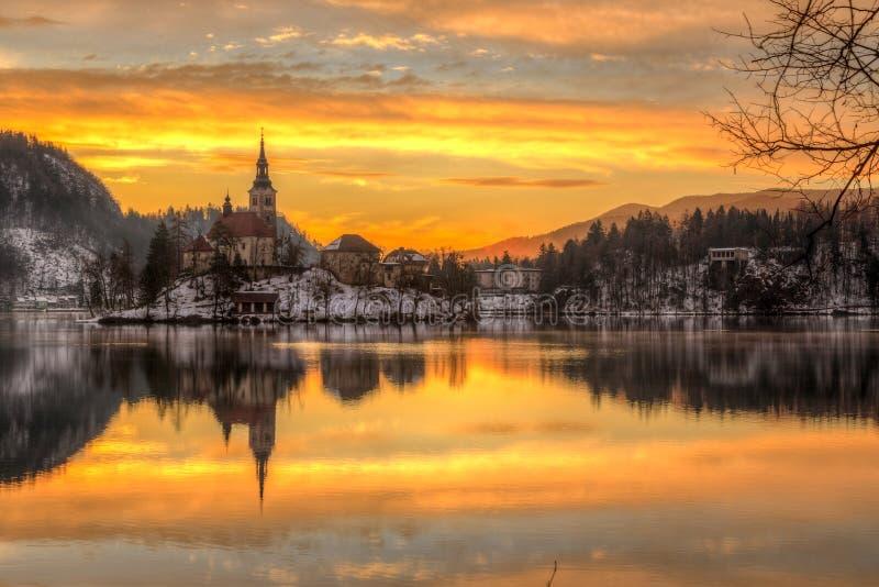 Кровоточенный с озером в зиме, Словения, Европа стоковые изображения rf