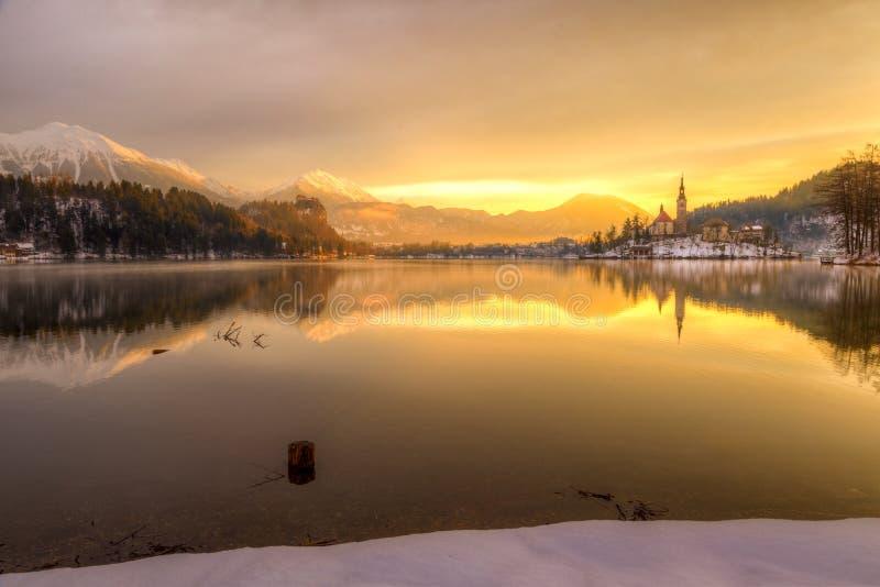 Кровоточенный с озером в зиме, Словения, Европа стоковое изображение