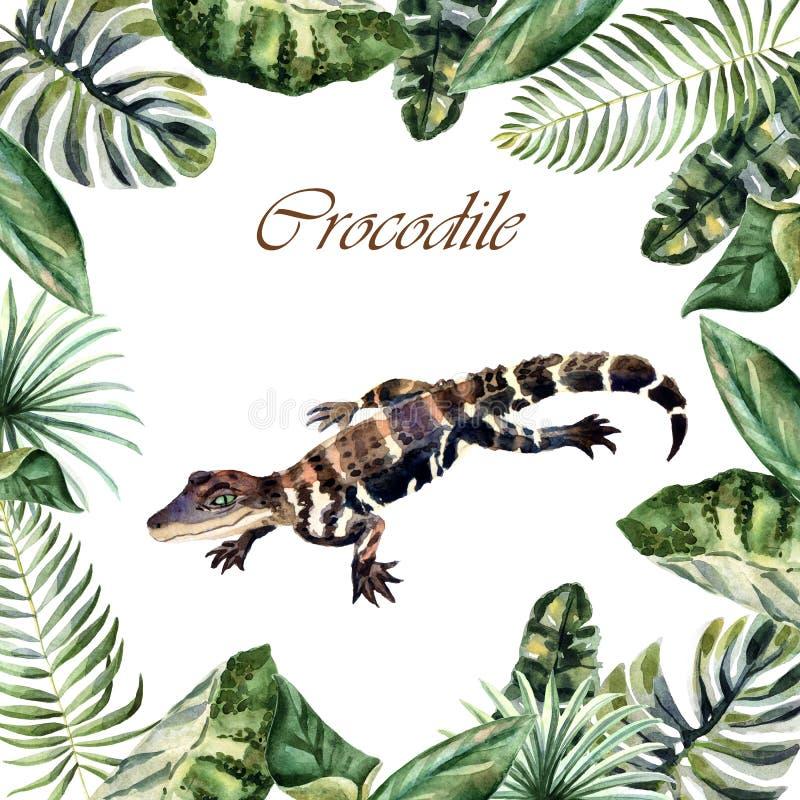 Крокодил акварели изолированный на белой предпосылке бесплатная иллюстрация