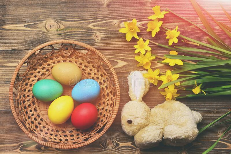Кролик, красочные пасхальные яйца в деревянном ведре с желтым narcissus стоковые фото