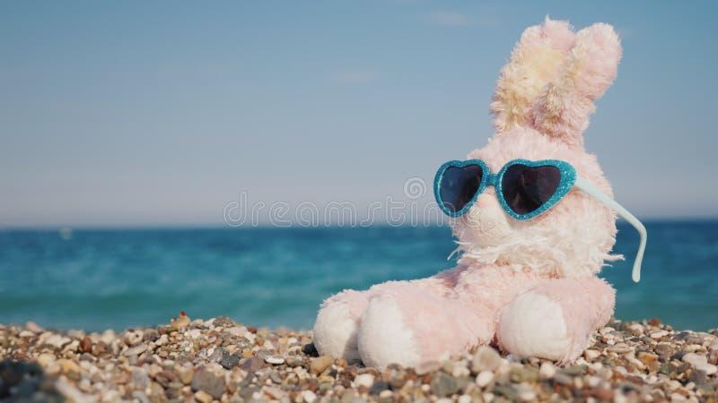 Кролик плюша в солнечных очках загорая на пляже стоковое фото