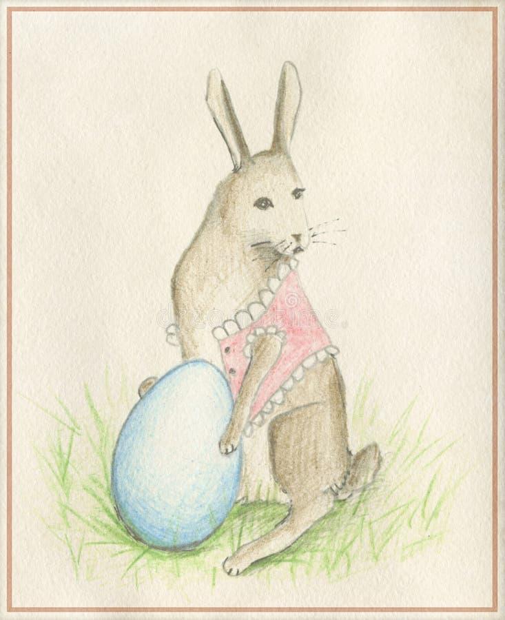 кролик яичка стоковые изображения rf