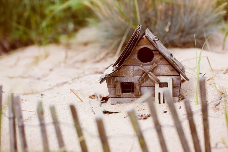 Крошечный дом с видом на море птицы в песке стоковая фотография rf