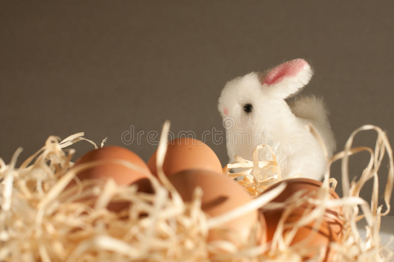 Кролик пасхи внутри сетки вполне пасхальных яя на деревенской древесине стоковое фото