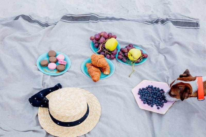 Круассан, шляпа, macrons и плоды на соре стоковые фото