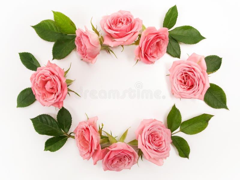 Круглая рамка сделанная розовых роз, зеленых листьев, ветвей, цветочного узора на белой предпосылке Плоское положение, взгляд све стоковое фото