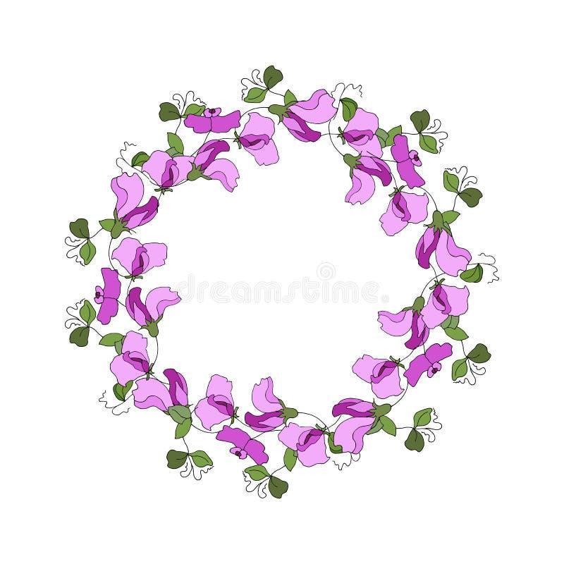 Круглая рамка с флористическими элементами цветков и листьев сладостного гороха иллюстрация штока