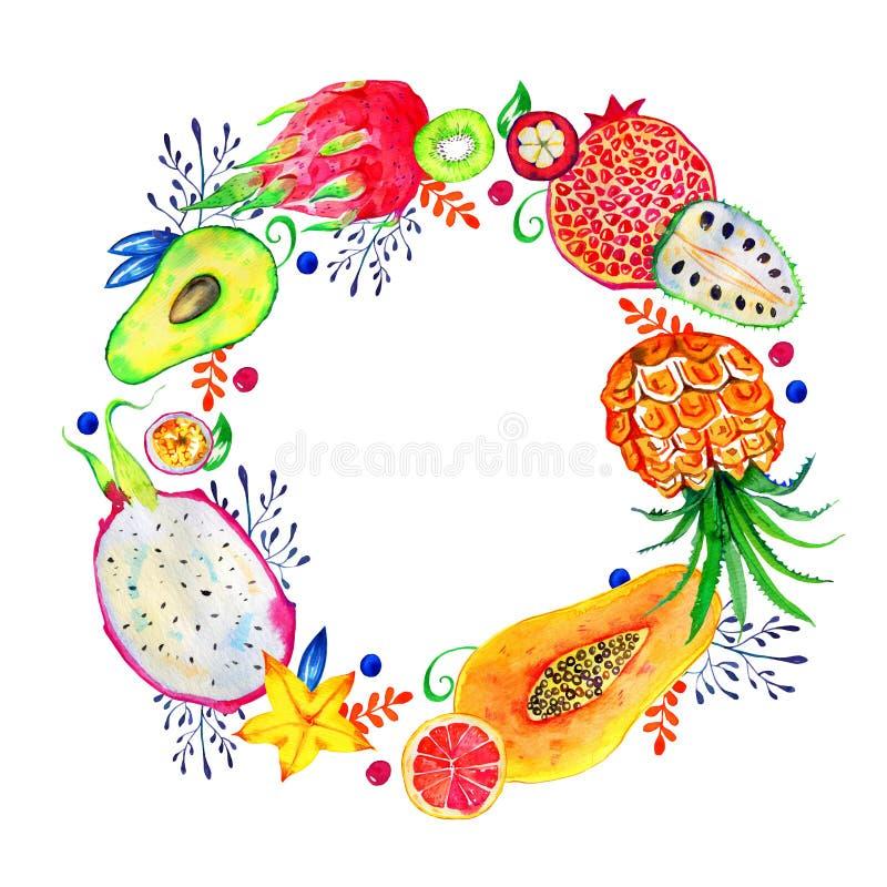 Круглая рамка с экзотическими плодами и декоративными цветками Цитрус, авокадо, pitahaya, карамбола, annona Нарисованный рукой ко иллюстрация вектора