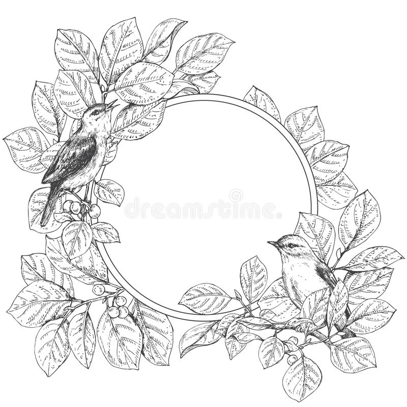 Круглая рамка с сидя птицами иллюстрация штока