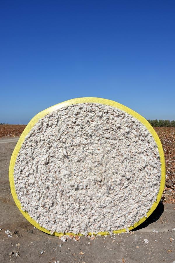 Круглая связка хлопка стоковая фотография