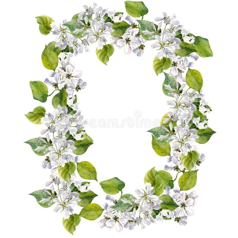 Круглая флористическая рамка с цветками яблони иллюстрация вектора
