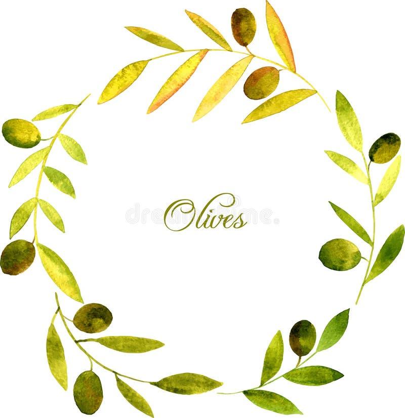 Круглый венок с зеленым цветом акварели выходит и оливки иллюстрация вектора