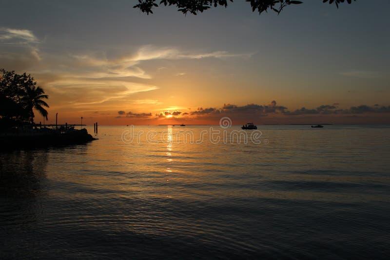 Круиз захода солнца океана стоковые изображения rf