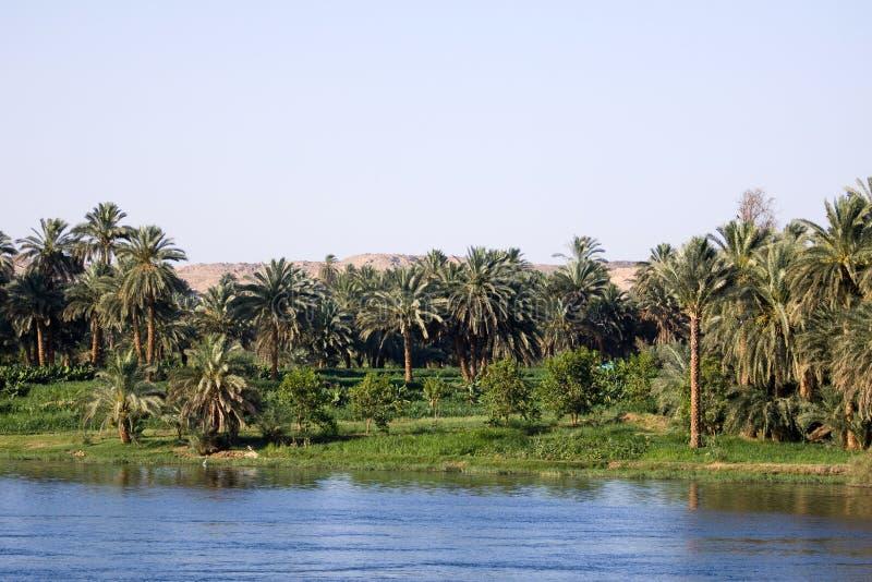Круиз Нила стоковая фотография rf