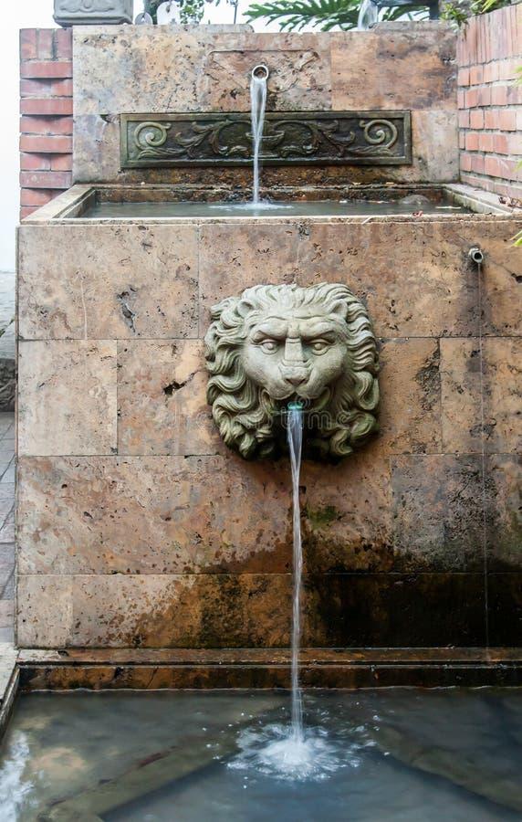 Крупное поместье Санта Барбара Богота Колумбия льва головное стоковое изображение