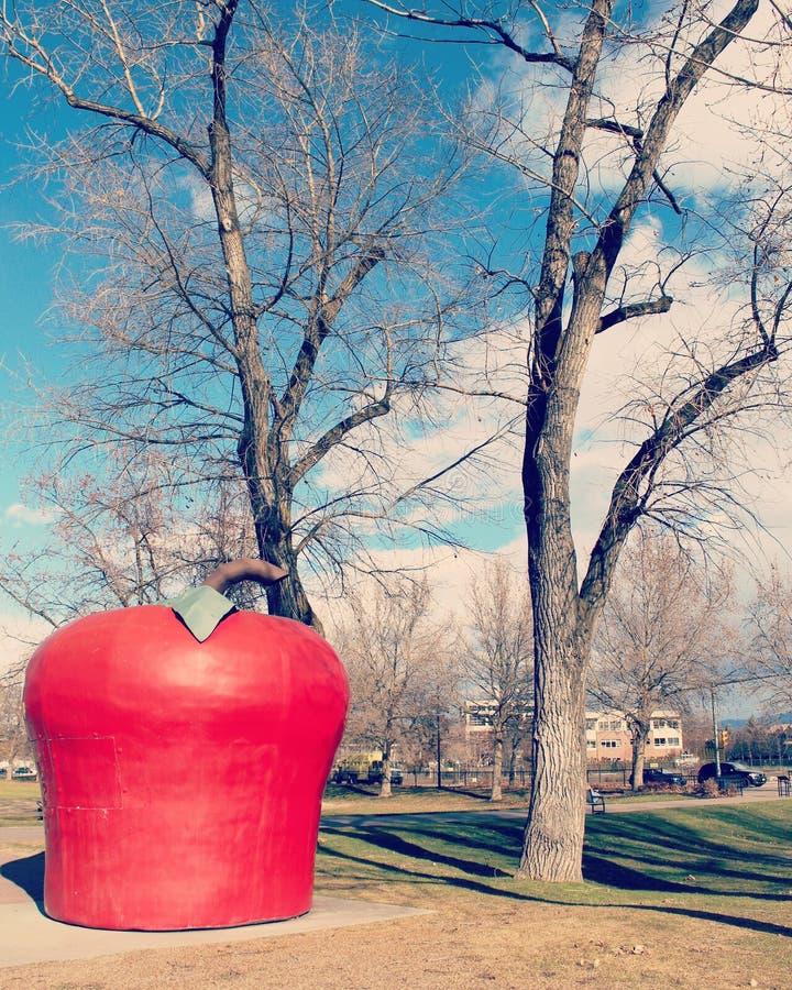 Крупный план большого красного Яблока с зеленым ориентир ориентиром лист в парке города на солнечный зимний день Kelowna ДО РОЖДЕ стоковое изображение rf