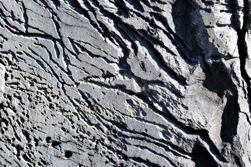 Крупный план большого утеса на бечевнике на бухте красильщика на накидке Элизабет, Cumberland County, Мейне, Новой Англии, США стоковое фото rf