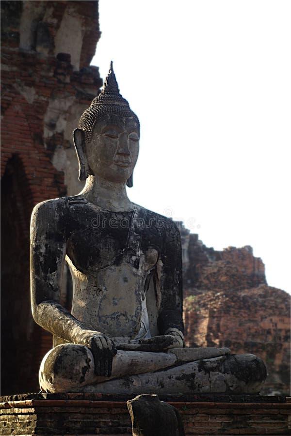 Крупный план буддийской статуи искупанный в свете стоковые изображения rf