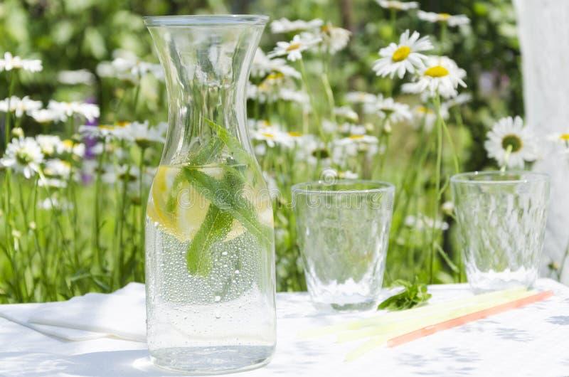 Крупный план бутылки холодной здоровой воды с лимоном и мятой на открытом воздухе Ослабьте время в саде во время солнечного и гор стоковые изображения