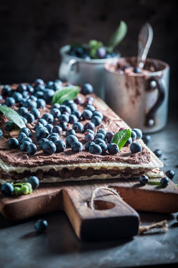 Крупный план вафель сделанных из шоколада и свежих ингридиентов стоковая фотография