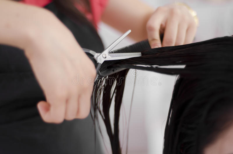 Крупный план волос вырезывания hairstylist стоковое фото