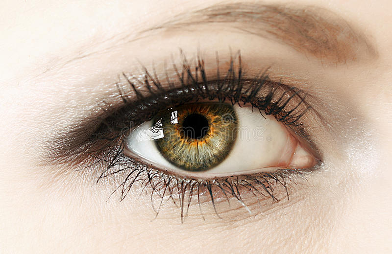 Крупный план глаза женщины стоковые фотографии rf