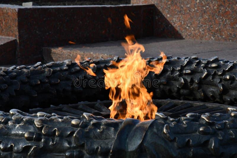 Крупный план горящего огня в бронзовом скульптурном мемориале Яркие оранжевые пламена внутри бронзового скульптурного дуба выходя стоковые изображения rf