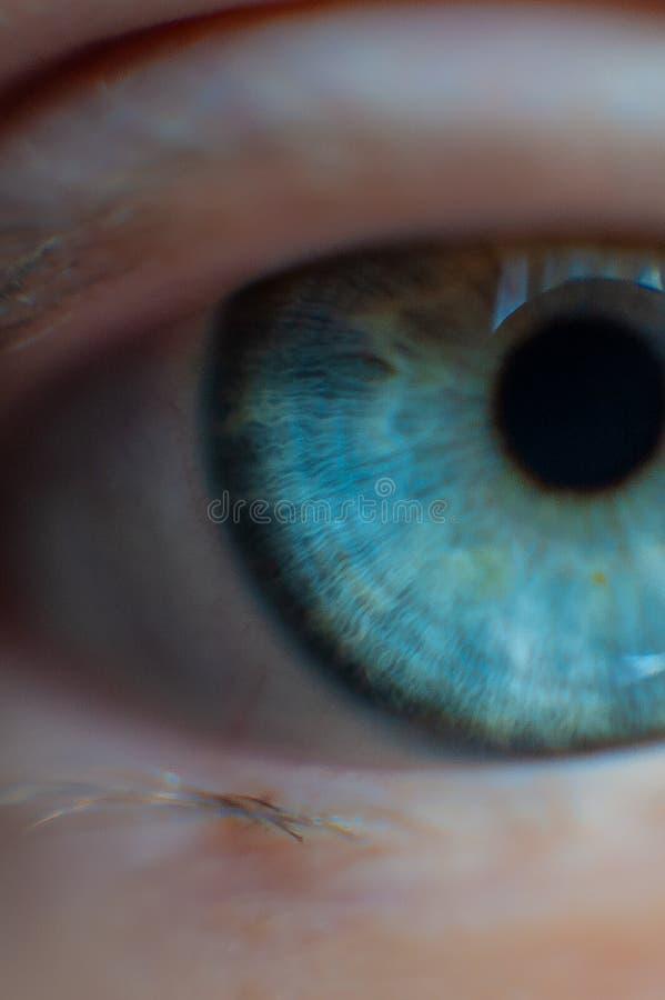 Крупный план девушки глаза стоковое фото rf