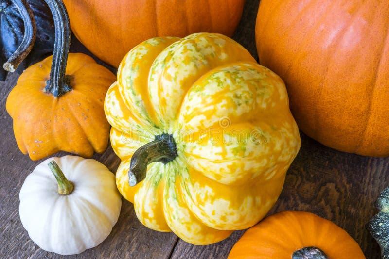 Крупный план желтого цвета и апельсина сделал по образцу тыкву на деревенских деревянных животиках стоковое фото rf