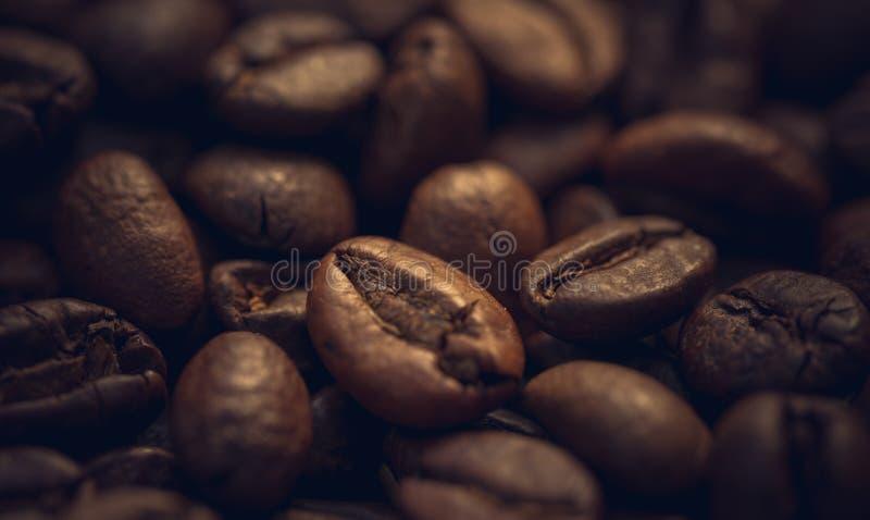 Крупный план кофейных зерен стоковые фото