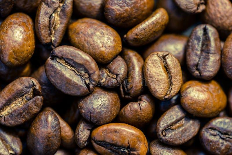 Крупный план кофейных зерен стоковое фото rf