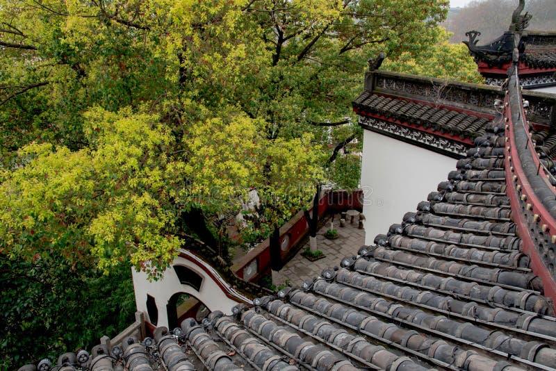 Крупный план крыши здания стиля традиционного китайского стоковое фото