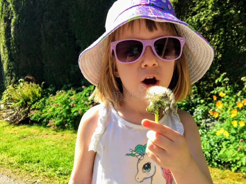Крупный план милой 5 - летней девушки держа и дуя на одуванчике в саде Она носит рубашку единорога стоковые изображения